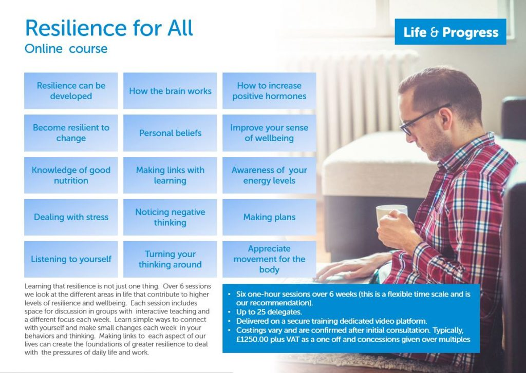 Resilience For All One Pager
